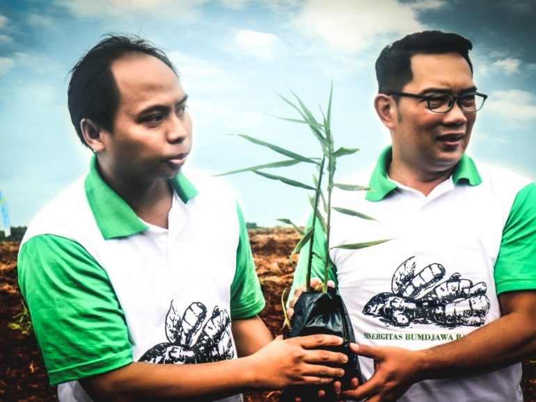 PT Agro Jabar Tanam Jahe Seluas 5 Hektare di Subang