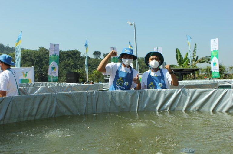 Budi Daya Ikan Milenial di Jabar Mulai Dijalankan